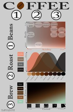 Coffee infographic, coffee facts, all about coffee Coffee Barista, Coffee Cafe, Espresso Coffee, Iced Coffee, Coffee Drinks, Starbucks Coffee, Drip Coffee, Black Coffee, Coffee Shop