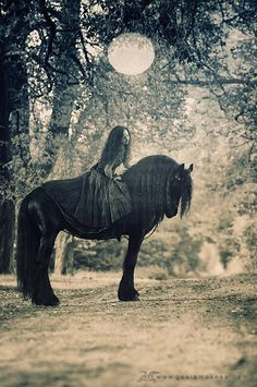 Cool Black Friesian horse and lady rider under the moon.