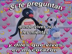 Pingu Memes, Spongebob Memes, Cute Love Memes, Funny Love, Romantic Memes, Cute Spanish Quotes, Love Phrases, Pinterest Memes, Wholesome Memes