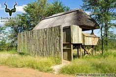 KNP - Punda Maria - Hide Kruger National Park, National Parks, Gazebo, Camping, Outdoor Structures, Campsite, Kiosk, Pavilion, Cabana