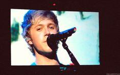 niall (: i love him (: (GIF)