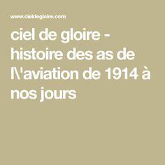 ciel de gloire - histoire des as de l\'aviation de 1914 à nos jours
