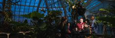 Crack the case at Murder at the Conservatory of Flowers