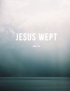 Jesus wept. | John 11:35 {at man's inhumanity to man and everything on the planet}