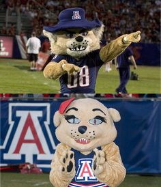 Arizona Wildcats - mascots Wilbur and Wilma