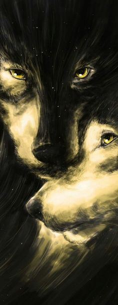 Fiercely protecting of family members - Anime Wolf Wolf Spirit, My Spirit Animal, Wolf Quotes, Wolf Love, Wolf Pictures, Beautiful Wolves, Wolf Tattoos, Lone Wolf, Belle Photo