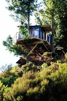 Une cabane dans les arbres en Nouvelle Zélande decodesign / Décoration