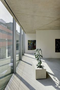 V' House | Wiel Arets Architects | Archinect