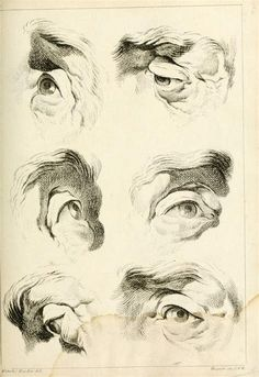 Eye studies drawn with cross-hatching, from Théorie de la figure humaine Anatomy Sketches, Anatomy Drawing, Anatomy Art, Drawing Sketches, Art Drawings, Life Drawing, Painting & Drawing, Anatomy For Artists, Figure Drawing Reference