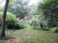 Fran Sorin garden