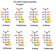 D and L Sugars — Master Organic Chemistry
