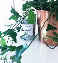 My lovely copper pot and plant next to the gorgeous marble scented candle from H&M that smells amazing!