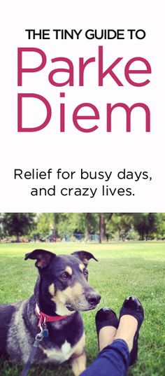 The Tiny Guide to Parke Diem (good stuff to try)