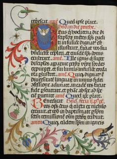 Happy owl Some images just hit the right spot. This cute owl in his best red coat is part of a decorated page in a Pontifical, a book that was read during a special Mass in the church, often by the bishop himself. Having ploughed through a full page of big chunky letters, he was treated to a change of pace: a bit of entertainment in the lower margin. Hidden inside the colourful display sits the owl, who is looking, puzzled, at a bell. While the significance of the scene is lost on me, it ...