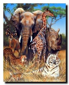 Zoo Exotic Collage (Giraffe, Rhino, Elephant And Tiger) African Safari Animal Art Print Poster (16x20) Impact Posters Gallery http://www.amazon.com/dp/B009YCWRFG/ref=cm_sw_r_pi_dp_G8Z2tb01A47B50P2