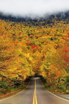 Fall in Vermont - Imgur