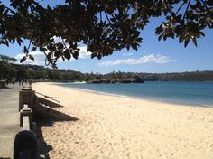 Across the road from Bottom of the Harbour is one of Sydney's best beaches, Balmoral