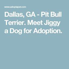 Dallas, GA - Pit Bull Terrier. Meet Jiggy a Dog for Adoption.