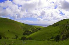A favorite vista south of Adelaide, Fleurieu Peninsula   By: Carolyn Papworth