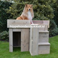 #hondenhok #steigerhout #trimtafel Dit hok kan uitstekend gebruikt worden als trimtafel. Hondenhok DJ Disney Films, Dog Houses, Otters, Chihuahua, Pets, Outdoor Decor, Animals, Doggies, Crafts