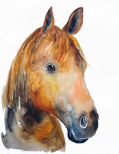 Custom PET PORTRAIT of your horse Original watercolor by dimdi, $80.00