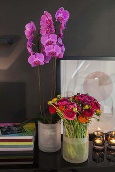 Lilla orkidé og fargerike ranunkler: http://www.mestergronn.no/blogg/orkide-forforende-og-vakker/