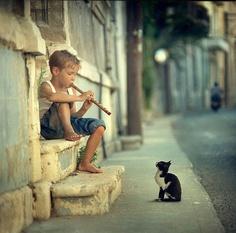 Little boy and kitten