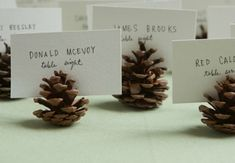 DIY: Pinecone Seating or Escort Card Holders Having a winter wedding? Try these mini pinecone seating card holders. This project is very simple, it just takes a little elbow grease. Wedding Places, Wedding Place Cards, Wedding Table, Fall Wedding, Rustic Wedding, Wedding Ideas, Wedding Seating, Woodland Wedding, Trendy Wedding
