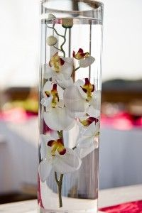 For those planning weddings (Michelle J!!) Center Piece - Orchid in Water with a vase