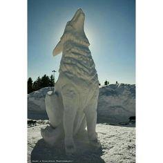 Joe Innovation on Twitter Snow Art, Innovation, Lion Sculpture, Statue, Twitter, Sculptures, Sculpture