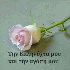 My good night and my love Good Morning Good Night, Good Night Quotes, Beautiful Pink Roses, Greek Language, I Am Awesome, Wish, Spirituality, Words, Gardening