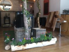 Introducing a touch of summer into our HETAS approved showroom. Showroom, Touch, Summer, Plants, Summer Time, Plant, Fashion Showroom, Planets