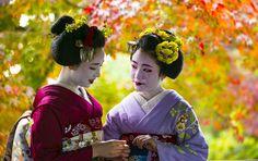 November 2015: maiko Mamefuji and Shouko by Koyano1742 - blog