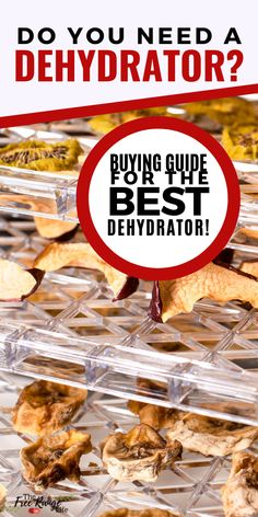 Are you looking for an electric dehydrator to preserve food this summer? Check out this guide for the best food dehydrators! Includes top picks from homesteaders, home preservers, and the best deal for your money! Best Food Dehydrator, Dehydrator Recipes, How To Make Bread, Bread Making, Dehydrators, Electric Foods, Pressure Canning, Dehydrated Food, Preserving Food