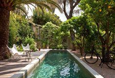 Lap pool and orange trees... Lonny Magazine (@LonnyMag)   Twitter