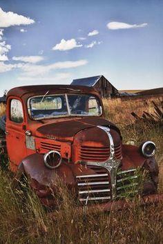 Vintage Pickup Trucks, Classic Chevy Trucks, Vintage Cars, Classic Cars, Chevy Classic, Antique Cars, Farm Trucks, New Trucks, Custom Trucks