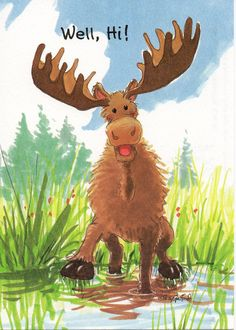 This board has some great illustrations for… Funny Animal Fails, Animal Jokes, Funny Animals, Cute Animals, Zoo Animals, Wild Animals, The Zoo, Moose Pictures, Cute Pictures