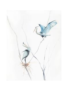 heron's nest Wall Art Prints by Annie Moran | Minted