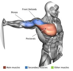 STRETCHING -  TORSO ROTATION WITH FIXED ARM