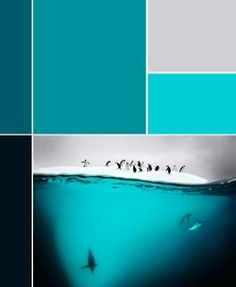 Blue to gray.