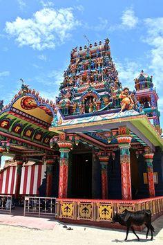 Introducing Jaffna, Sri Lanka.
