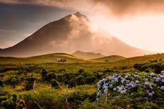 Kết quả hình ảnh cho Quần đảo Azores, Khu tự trị Azores, Bồ Đào Nha