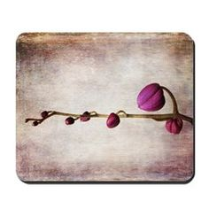 Shop Mousepad designed by GracefulFoto. Lots of different size and color combinations to choose from. Gifts For Boss, Mousepad, Funny Design, Great Gifts, Hair Accessories, Shop, Prints, Amazing Gifts, Hair Accessory
