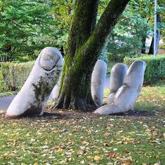 10+ Amazing Street Art Installations That Cleverly Interact With Nature   Bored Panda