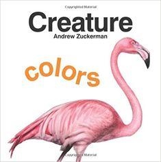 Creature Colors: Amazon.ca: Andrew Zuckerman: Books