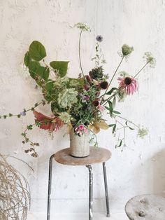 Amy Merrick_Natura Studio_Gardenista_Curent_Obsessions