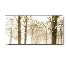 Winter Sepia Landscape Photo, snow, blizzard, storm, trees, white, dramatic, forest, stark, winter print