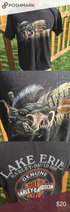 Harley Davidson Mens HAWG T Shirt Size Large Size large. Super gently preowned. Be sure to view the other items in our closet. We offer  women's, Mens and kids items in a variety of sizes. Bundle and save!! We love reasonable offers!! Thank you for viewing our item!! Harley-Davidson Shirts Tees - Short Sleeve