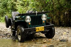 1951 Willys CJ-3A - Photo submitted by Juan Pablo Murillo Villa.
