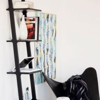 Ladder with shelves